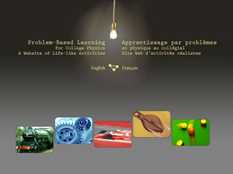 Problem-Based Learning for College Physics