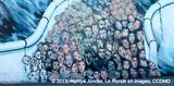 Les vidéos du colloque «Frontières, murs et violence» maintenant disponibles en ligne
